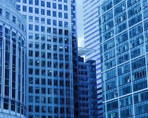 struktura monistických akciových společností